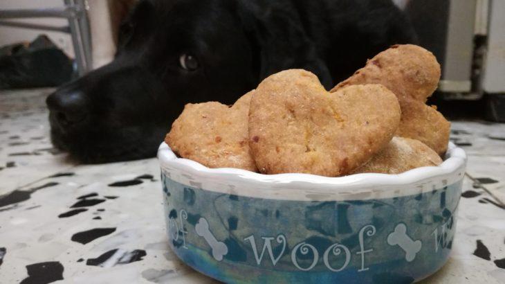 עוגיות לכלבים